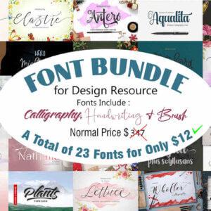 Fonts Bundle Vol-1